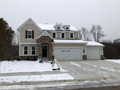 Rockford MI Single Family Home For Sale: $389,000