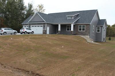 Van Buren County Single Family Home For Sale: 43081 Fitzgerald Street