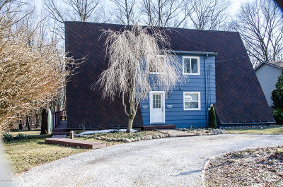 Kalamazoo Single Family Home For Sale: 8137 Heritage Drive