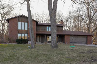 Kalamazoo Single Family Home For Sale: 6868 Springbrook Lane