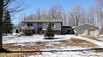 Luther Single Family Home For Sale: 10710 E Three Mile Road