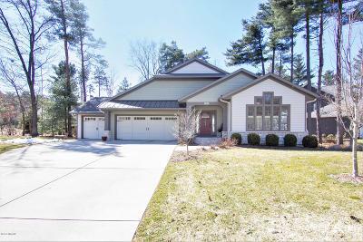 Kalamazoo Single Family Home For Sale: 5543 N Red Pine Circle