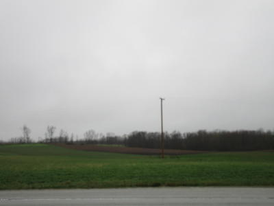 Newaygo County Residential Lots & Land For Sale: Mason Drive