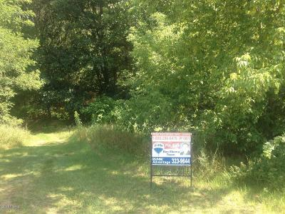Paw Paw Residential Lots & Land For Sale: 58787 Kristina Circle E