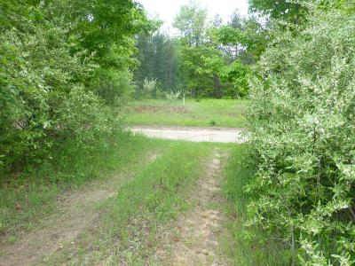 Scottville Residential Lots & Land For Sale: 00 N Lasalle
