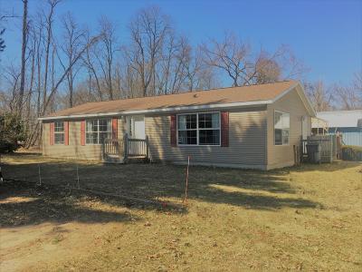 Plainwell Single Family Home For Sale: 5750 W B Avenue