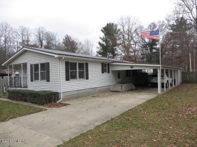 White Cloud Single Family Home For Sale: 8715 E James Street
