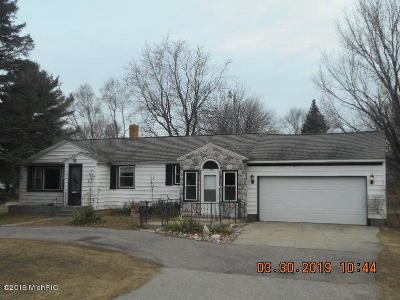 Ludington Single Family Home For Sale: 6230 W Bryant Road