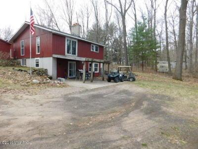 Oceana County Single Family Home For Auction: 560 E Hoppe