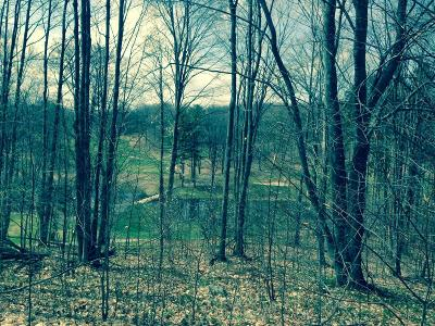 Antrim County Residential Lots & Land For Sale: Hawk's Spur Dr. Drive #81