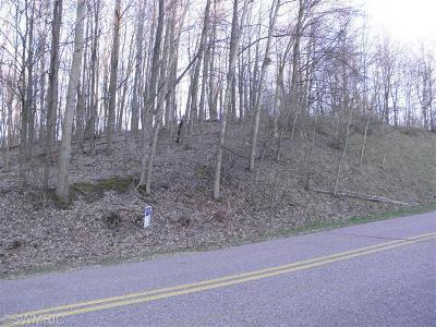 Plainwell Residential Lots & Land For Sale: 29 S Lake Doster Drive