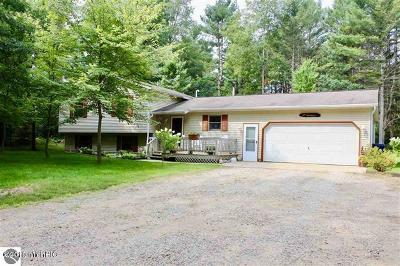 Wexford County Single Family Home For Sale: 8150 S 35 Road