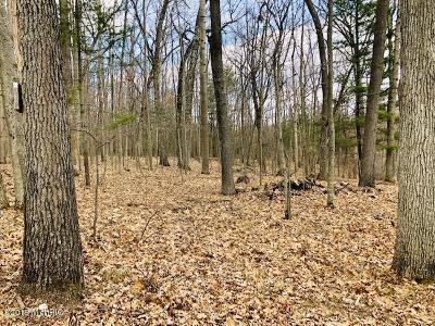 Antrim County, Benzie County, Charlevoix County, Clare County, Emmet County, Grand Traverse County, Kalkaska County, Lake County, Leelanau County, Manistee County, Mason County, Missaukee County, Osceola County, Roscommon County, Wexford County Residential Lots & Land For Sale: Noreika