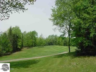Wexford County Residential Lots & Land For Sale: 00 White Pine
