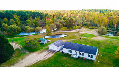 Isabella County Single Family Home For Sale: 7391 W Battle Road
