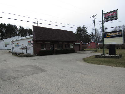 Newaygo Commercial For Sale: 9530 Mason Drive