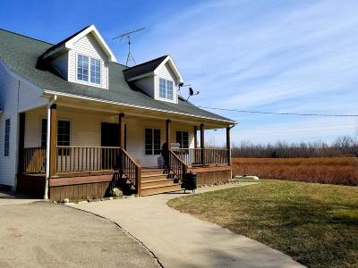 South Haven Single Family Home For Sale: 533 62 Nd Street