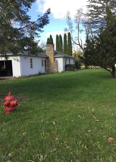 Ingham County Single Family Home For Sale: 5117 Park Lake Road