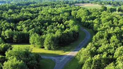 St. Joseph County Residential Lots & Land For Sale: Lot 88 Canoe Road