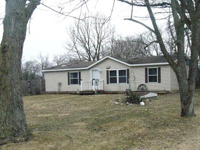 Coldwater Single Family Home Active Contingent: 284 Raymond Drive