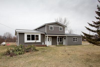 Battle Creek Single Family Home For Sale: 10893 Bellevue Road