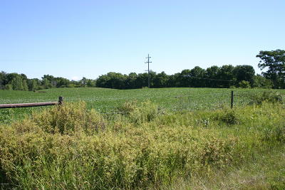 Barry County Residential Lots & Land For Sale: Vl Delton Rd