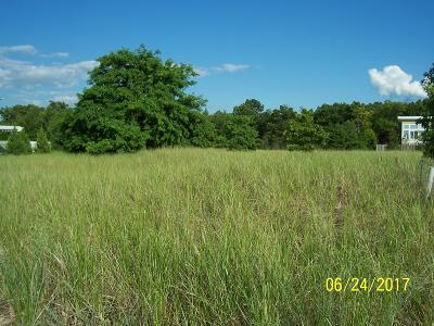 New Buffalo Residential Lots & Land For Sale: 51224 Main Drive