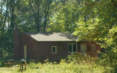 Allegan County Single Family Home For Auction: 3348 127th Avenue