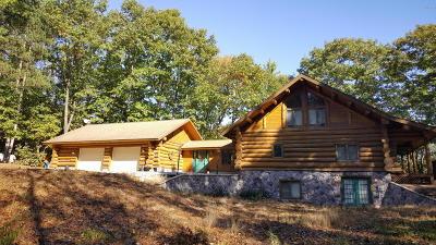 Rothbury Single Family Home For Sale: 2846 E Yale Road