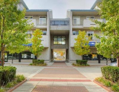 Grand Haven, Spring Lake, Ferrysburg Condo/Townhouse For Sale: 529 Miller Drive #213