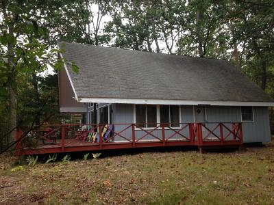 Pentwater Single Family Home For Sale: 6346 Ottawa Lane