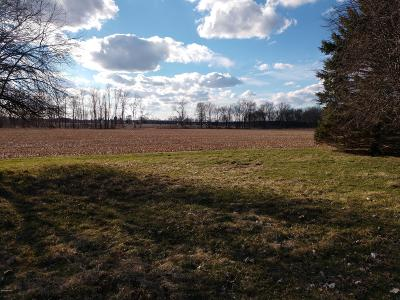 Berrien County, Branch County, Calhoun County, Cass County, Hillsdale County, Jackson County, Kalamazoo County, Van Buren County, St. Joseph County Residential Lots & Land For Sale: 2701 Old Us-27 N