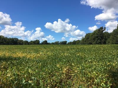 Berrien County, Branch County, Calhoun County, Cass County, Hillsdale County, Jackson County, Kalamazoo County, Van Buren County, St. Joseph County Residential Lots & Land For Sale: E Glendora Road
