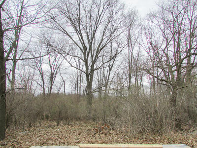 Coldwater MI Residential Lots & Land For Sale: $29,000
