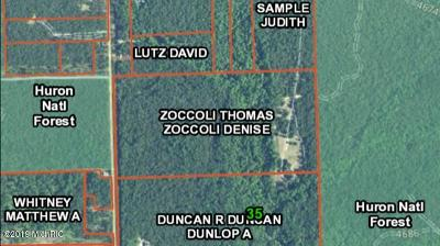 Residential Lots & Land For Sale: 787 Sand Lake Rd