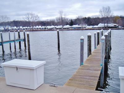 St. Joseph Residential Lots & Land For Sale: 399 Island Pointe Drive #Dock 170