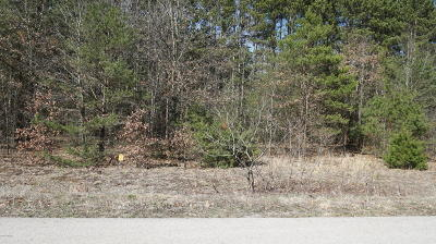 Lawton Residential Lots & Land For Sale: Lot 11 Pine Ridge Circle