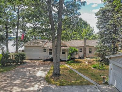 Newaygo Single Family Home For Sale: 9383 S Catalpa Avenue #B
