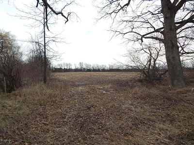 Belding Residential Lots & Land For Sale: 6670 N Johnson Road