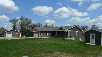 Saranac Single Family Home For Sale: 5397 Crooked Creek