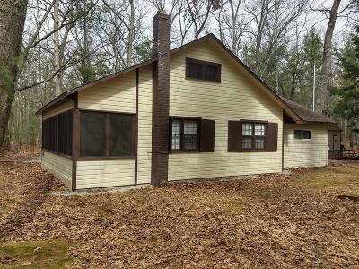 Pentwater Single Family Home For Sale: 5709 Ottawattamie Street