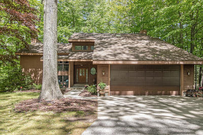 Ludington Single Family Home For Sale: 6738 W Timber Lane