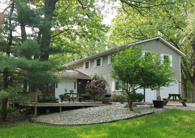 Kalamazoo Single Family Home For Sale: 7855 W R Avenue