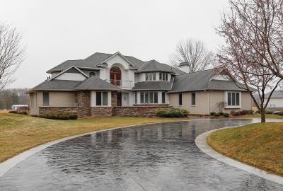 Kalamazoo Single Family Home For Sale: 142 Skyview Drive #Lot 8