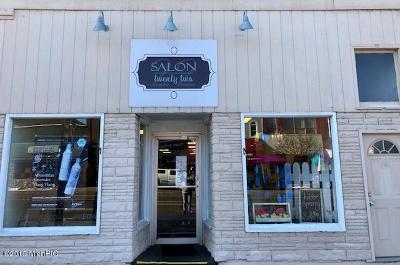 Ludington Commercial Active Contingent: 117 W Ludington Avenue