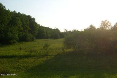 Newaygo County Residential Lots & Land For Sale: 12201 Rich Avenue