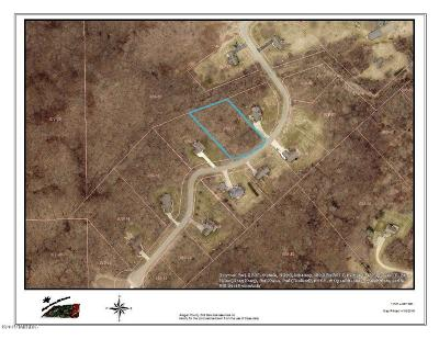 Residential Lots & Land For Sale: Lot 17 Fox Mountain Drive