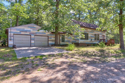 Lake County Single Family Home For Sale: 9326 S Viola Avenue