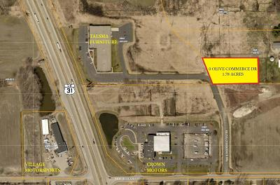 Ottawa County Residential Lots & Land For Sale: Olive Commerce Drive
