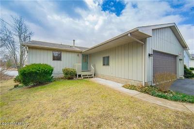 Single Family Home For Sale: 13883 Grandview Drive